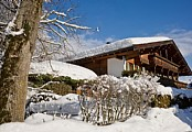 Ellmau Skiwelt - March Special - Apartment